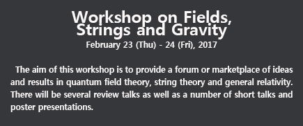 Workshop on Fields, Strings and Gravity