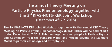 The annual Theory Meeting on Particle Physics Phenomenology together with the 3rd KIAS-NCTS-KEK Joint Workshop