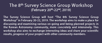 The 8th Survey Science Group Workshop